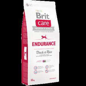12kg_endurance
