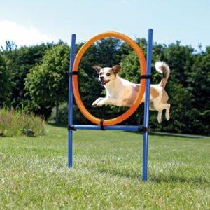 Trixie Dog Agility Ring (1)