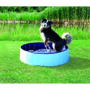 Trixie Hundepool (1)