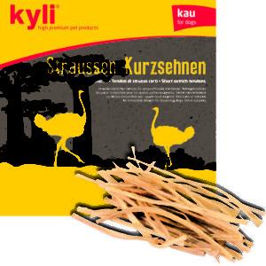 Straussenwings.indd